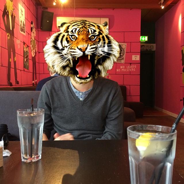 Tigre Hipster
